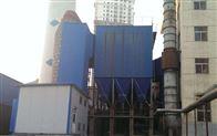 8吨锅炉布袋除尘器