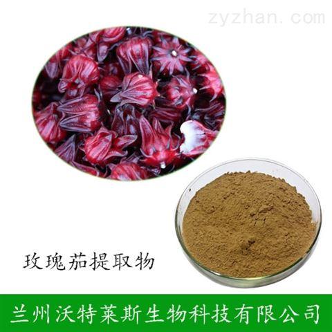 玫瑰茄提取物 比例浓缩提取 洛神花提取