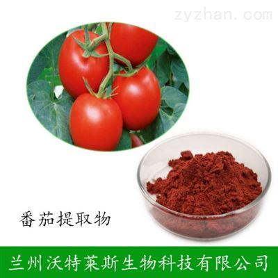 黑番茄提取物  大量库存  批发价格