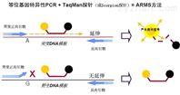 DOP-PCR試劑盒