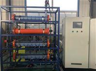 河南農村飲水消毒設備/50克次氯酸鈉發生器