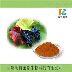 热销 葡萄籽提取物10:1  原花青素