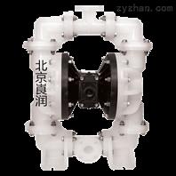 SANDPIPER勝佰德2寸塑料泵 S20B3P1PPUS000