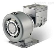 美国Agilent TriScroll 300 变频泵