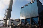 慧阳10吨锅炉除尘器