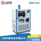 QFN-DGJ-F系列硅油加热原位方仓冷冻干燥机厂家直销