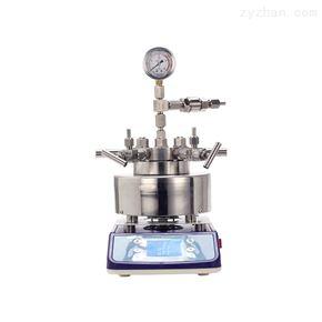 磁力搅拌微型高压反应釜