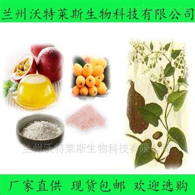 槐实提取物 黄酮 浸膏 多种规格