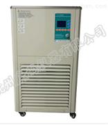恒温搅拌反应浴槽DHJF-4010