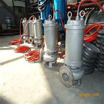 304不锈钢污水泵-东坡专业