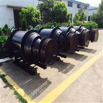东坡泵业简易式潜水轴流泵