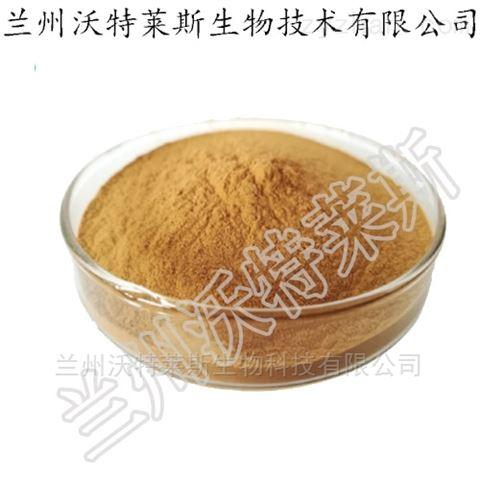 茶藨子叶状层菌发酵菌丝体 金银花菌粉 包邮