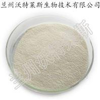 菊芋粉/提取物 /膳食纤维 菊粉 食品级