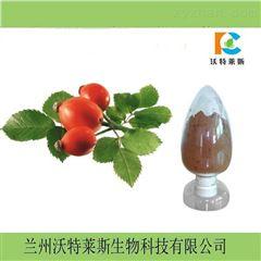玫瑰茄粉  洛神花粉 全水溶性粉  提取物
