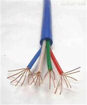 ZB-DJYPV22計算機電纜廠家正品報價