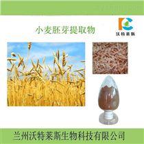 膳食纤维小麦膳食纤维素  小麦纤维60 现货