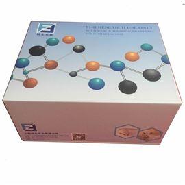 桥粒芯蛋白3IgG进口试剂盒