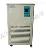 DHJF-8005低温恒温反应器生产厂家
