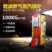 河南燃氣蒸汽發生器