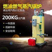 節能燃氣蒸汽發生器