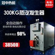 鄭州0.3噸燃氣蒸汽發生器