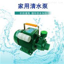 微型電動清水離心泵550W家用管道增壓泵