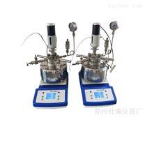 小型多功能 高压反应釜可电动搅拌磁力搅拌