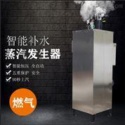 旭恩蒸汽发生器锅炉立式高效锅炉