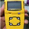 BW MC2-W可燃气体检测仪 防暴等级:IP66/67