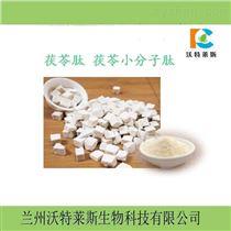 提取物10:1茯苓活性肽80  专业小分子肽  定制肽