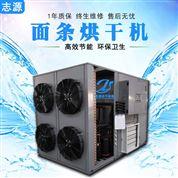 新一代面条烘干机热风循环烘箱零污染