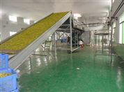 海藻(椰蓉)干燥生產線