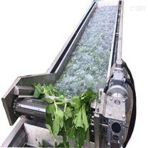 DRT连续式水浴浸泡清洗油菜机器设备