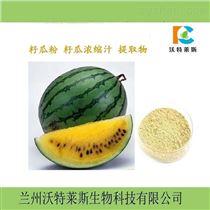 浸膏粉10:1水溶性籽瓜浓缩粉  提取物  果粉